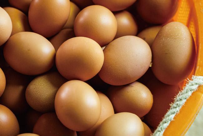 参鍋養鶏場の卵