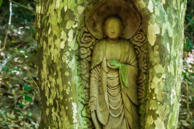 [生き木地蔵]生きている鹿子の木に彫り込まれた地蔵尊。
